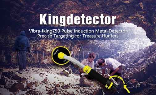 Fully Waterproof Vibra-iking 750 PI Precise Targeting Pinpointer